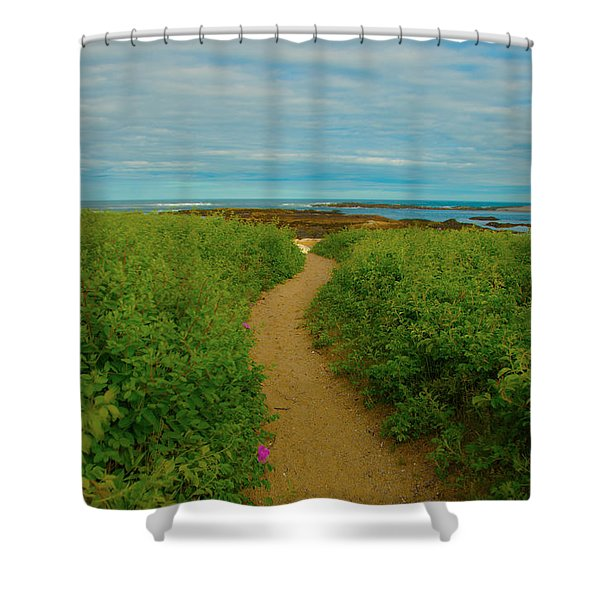 Path To Blue Shower Curtain