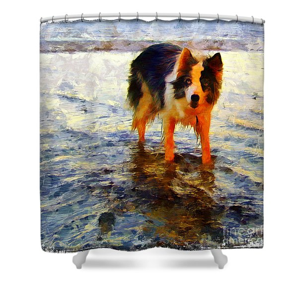 Paws For Thought Shower Curtain