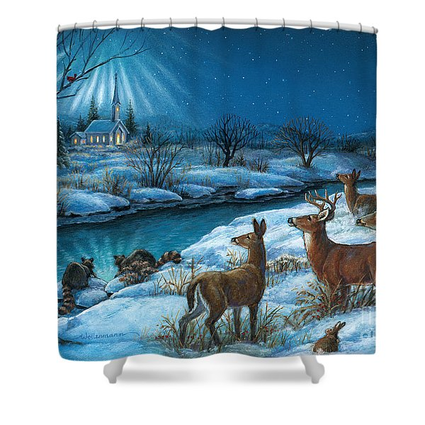Peaceful Winters Night Shower Curtain
