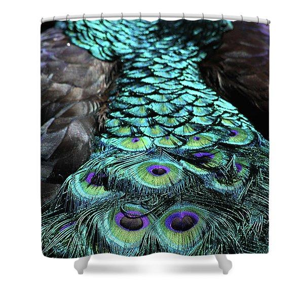 Peacock Trail Shower Curtain