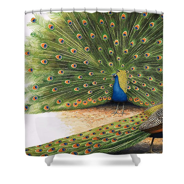 Peacocks Shower Curtain