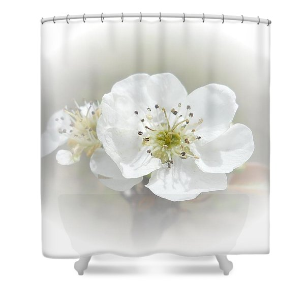 Pear Blossom Shower Curtain