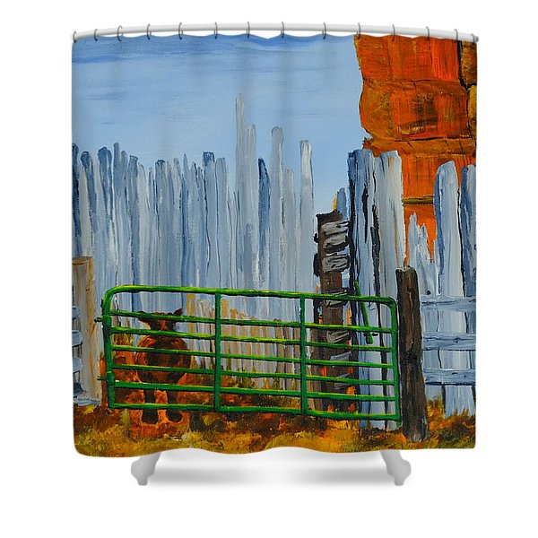 Peek Shower Curtain