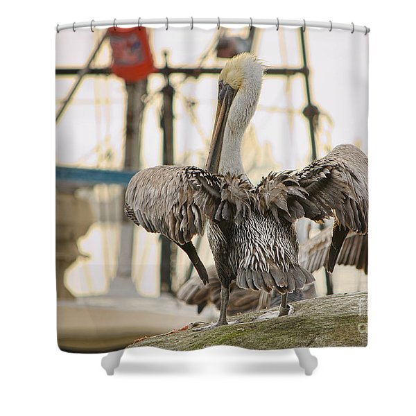 Pelican Strut Shower Curtain