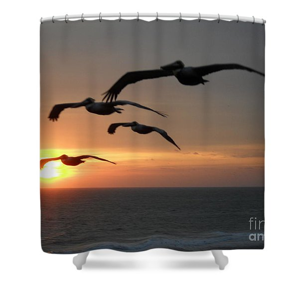 Shower Curtain featuring the photograph Pelican Sun Up by Laurie Lundquist