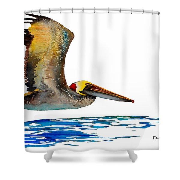 Da137 Pelican Over Water By Daniel Adams Shower Curtain