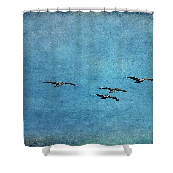Pelicans In Flight Shower Curtain