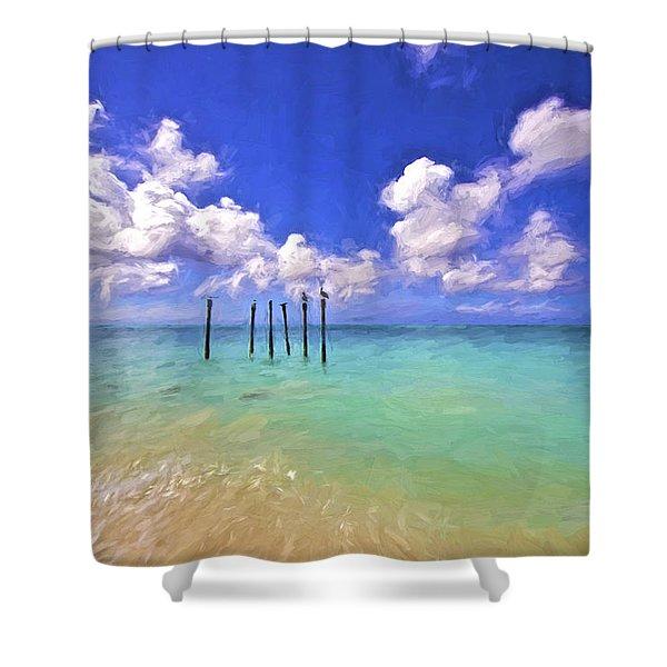 Pelicans Of Aruba Shower Curtain