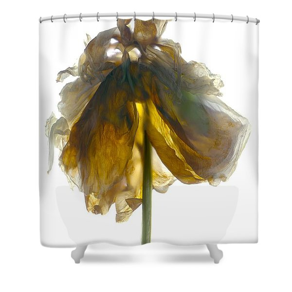Peony Stand White Shower Curtain