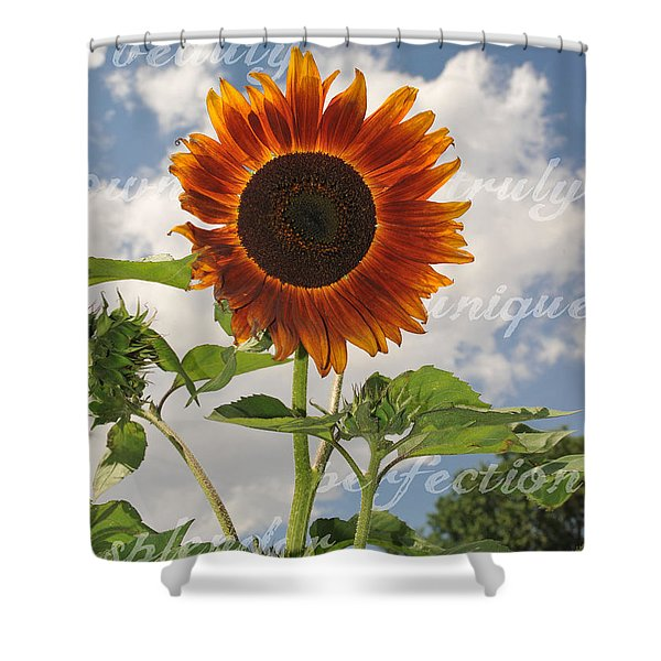 Perfection In The Eye Of The Beholder Shower Curtain