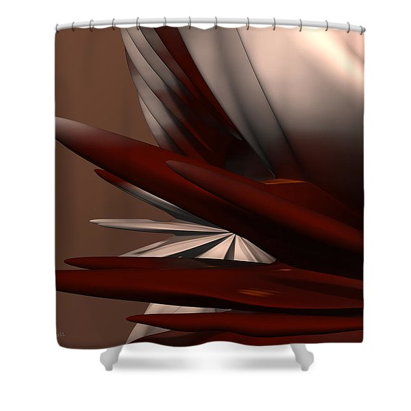 Petals And Stone 2 Shower Curtain