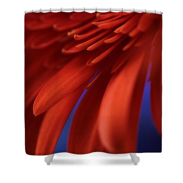 Petals Shower Curtain