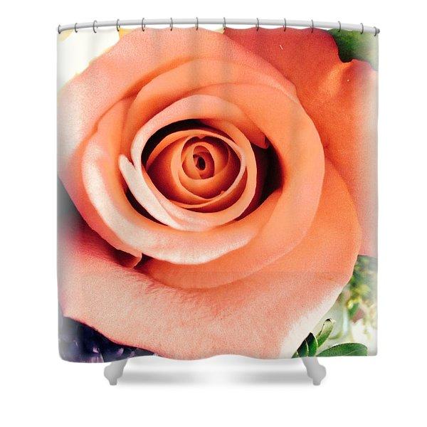 Petals Of Peach Shower Curtain