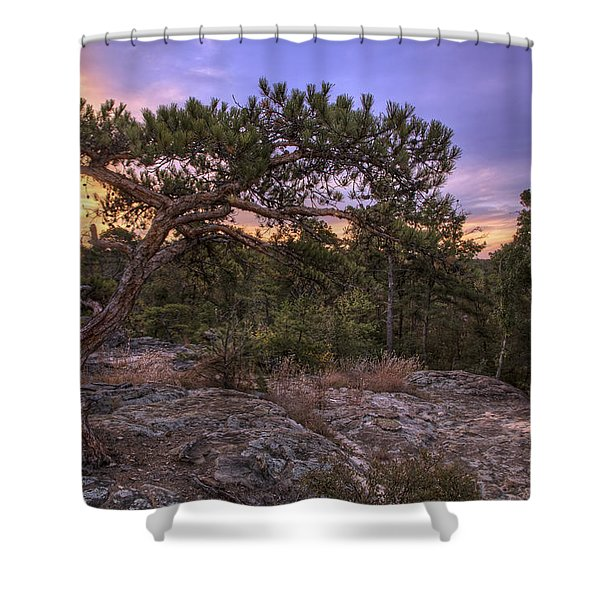 Petit Jean Mountain Bonsai Tree - Arkansas Shower Curtain
