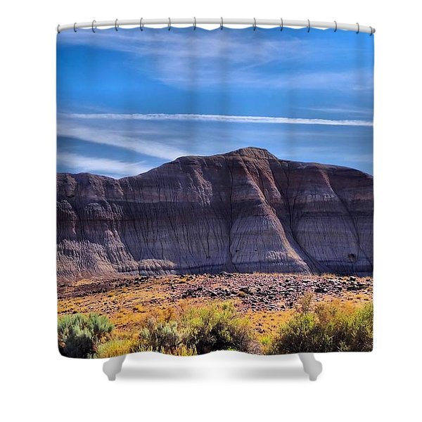 Petrified Forest Landscape Shower Curtain