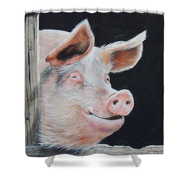 Piggy.  Sold  Shower Curtain