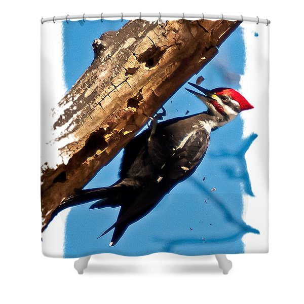 Shower Curtain featuring the photograph Pileated Woodpecker by Robert L Jackson