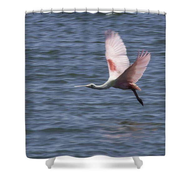 Pink And Blue IIi Shower Curtain