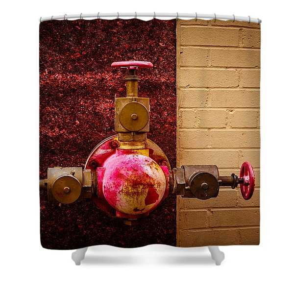 Pink And Rusted Shower Curtain