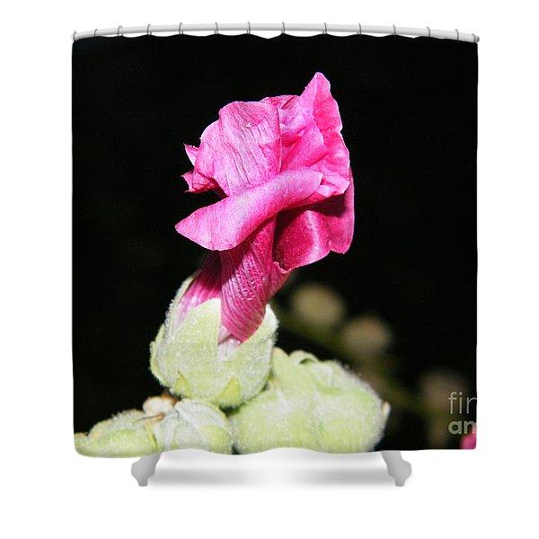 Pink Hollyhock  Shower Curtain