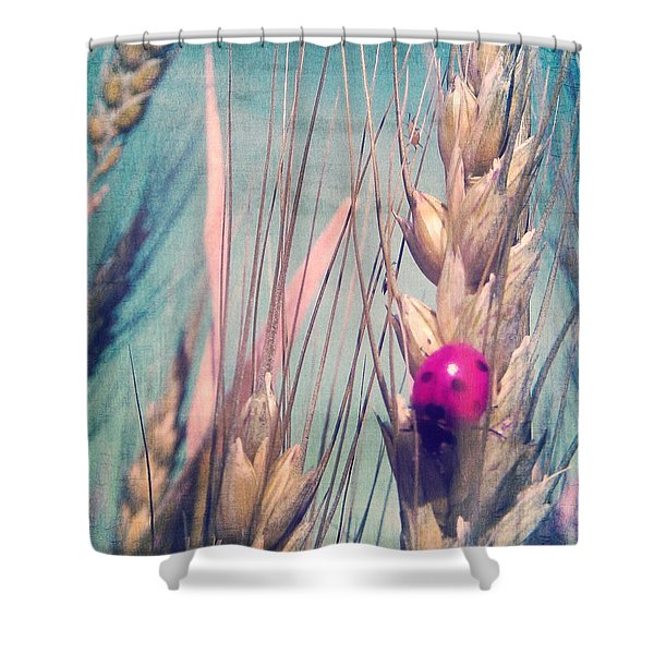 Pink Ladybug Shower Curtain