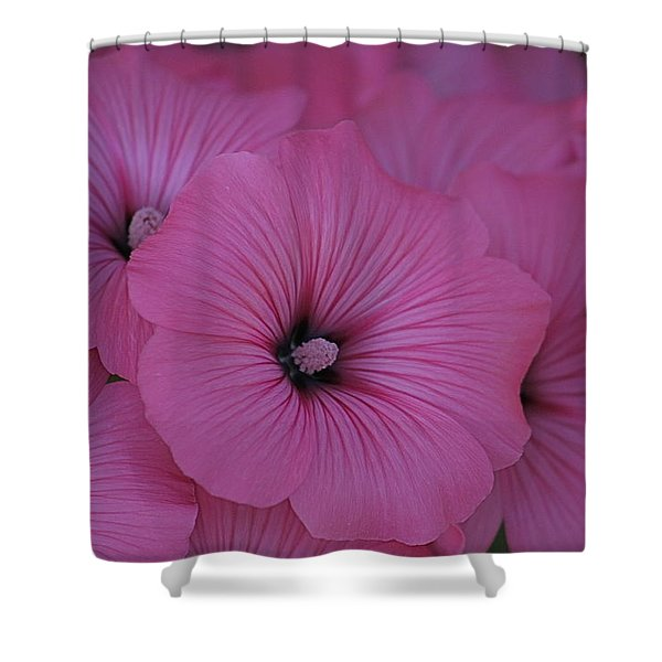 Pink Petunia Shower Curtain