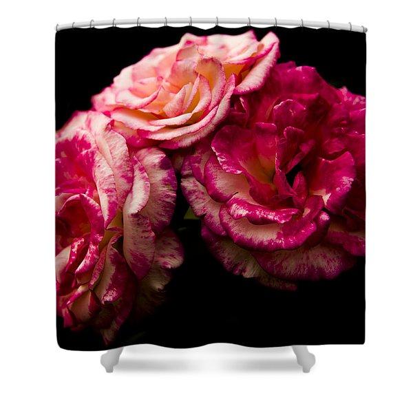 Pink Solitude Shower Curtain
