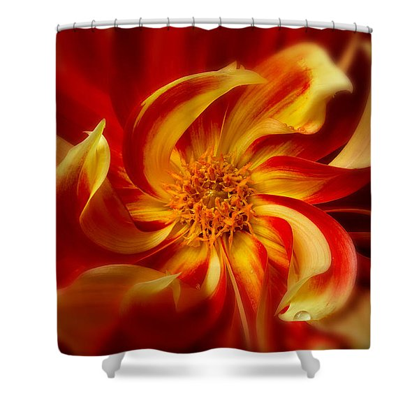 Shower Curtain featuring the photograph Pinwheel by Mary Jo Allen