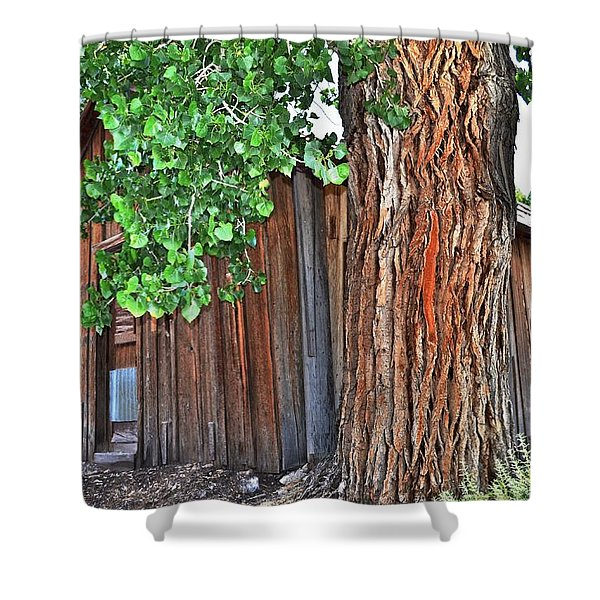 Pioneer Cabin Shower Curtain