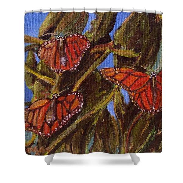 Pismo Monarchs Shower Curtain