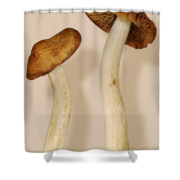 Plant - Mushrooms - I'm So Proud Of My Daughter Shower Curtain