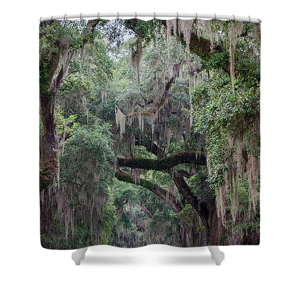 Plantation Path Shower Curtain