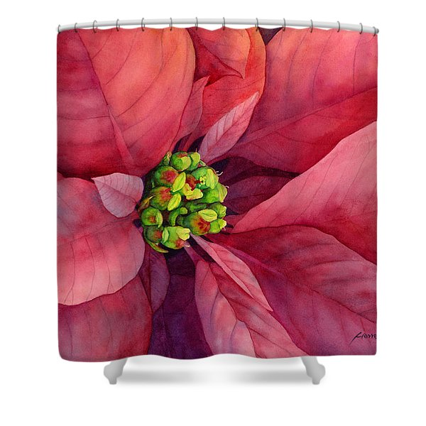 Plum Poinsettia Shower Curtain