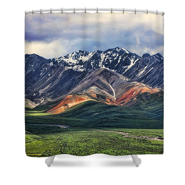 Polychrome Shower Curtain