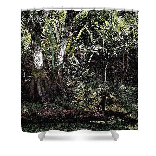 Pond Apple-1 Shower Curtain