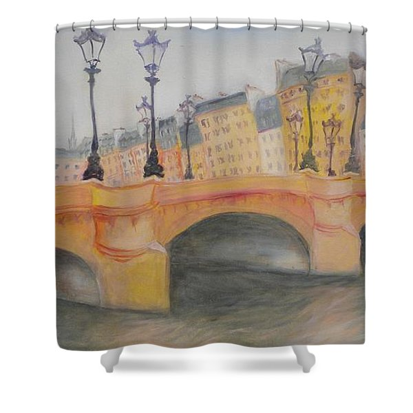 Pont Neuf Et Ile De La Cite, 2010 Oil On Canvas Shower Curtain