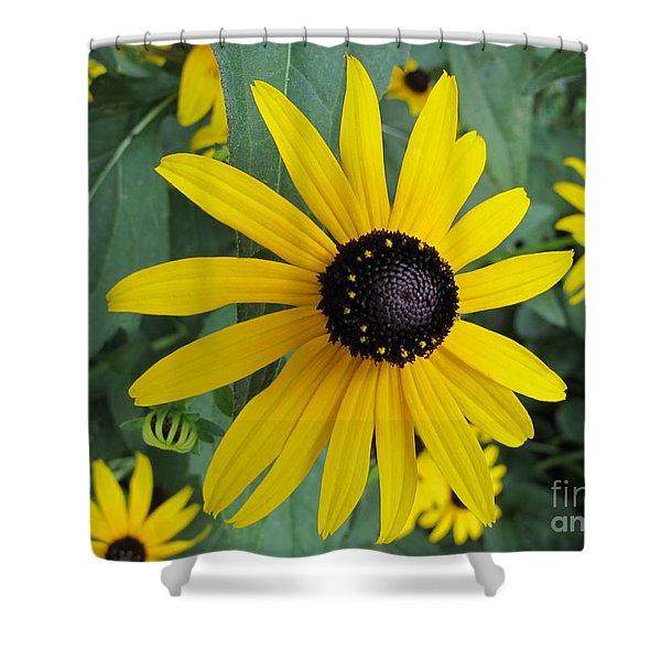 Pop Yellow Shower Curtain