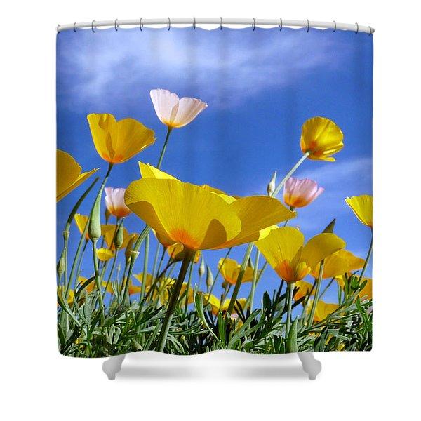 Poppies And Blue Arizona Sky Shower Curtain