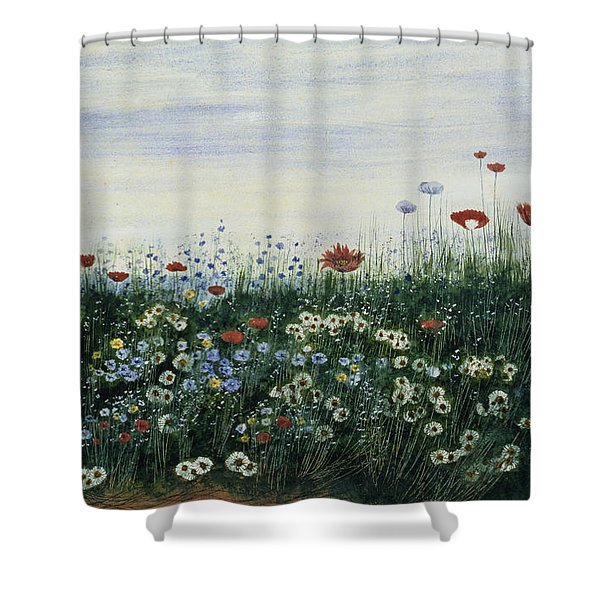 Poppies, Daisies And Other Flowers Shower Curtain