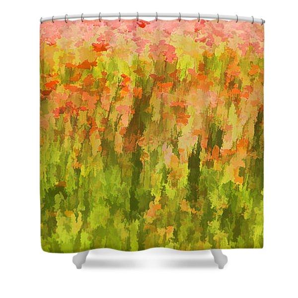 Poppies Of Tuscany IIi Shower Curtain