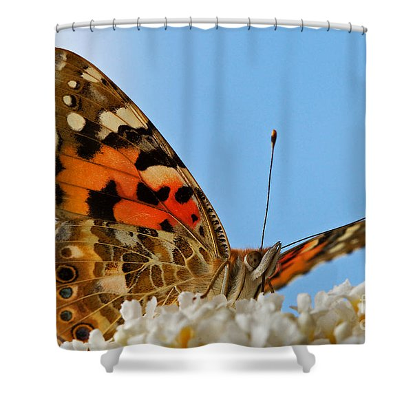 Portrait Of A Butterfly Shower Curtain