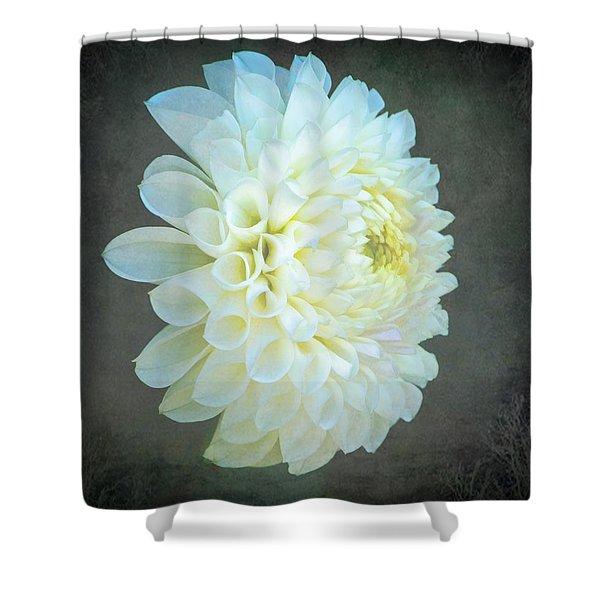 Portrait Of A Dahlia Shower Curtain