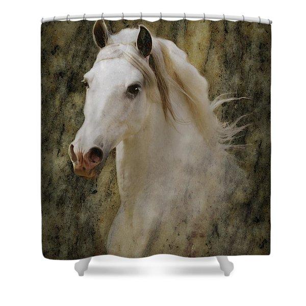 Portrait Of A Horse God Shower Curtain