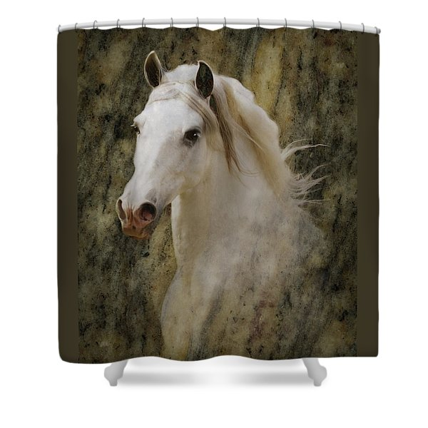 Portrait Of A Horse God Shower Curtain