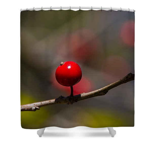 Possumhaw Fruit Abstraction Shower Curtain