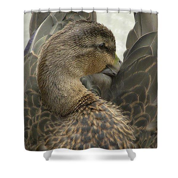 Pretty Duck Shower Curtain