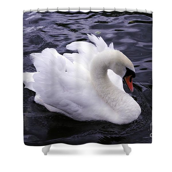 Shower Curtain featuring the photograph Pretty Swan by Jeremy Hayden