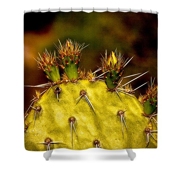 Prickly Pear Spring Shower Curtain