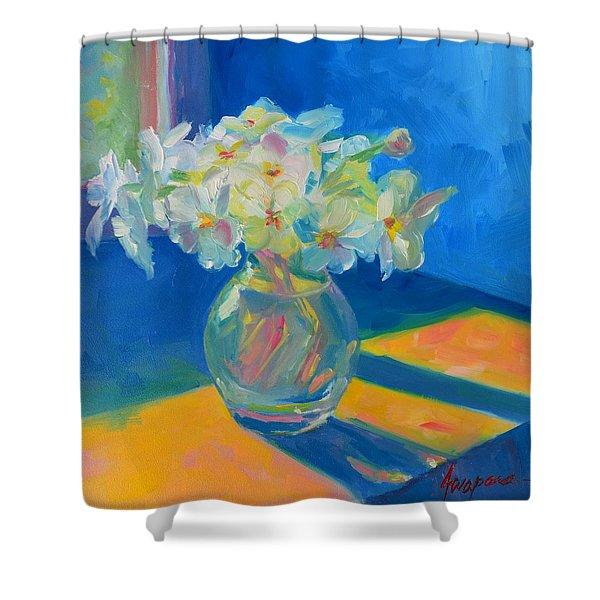 Primroses In Spring Light - Still Life Shower Curtain
