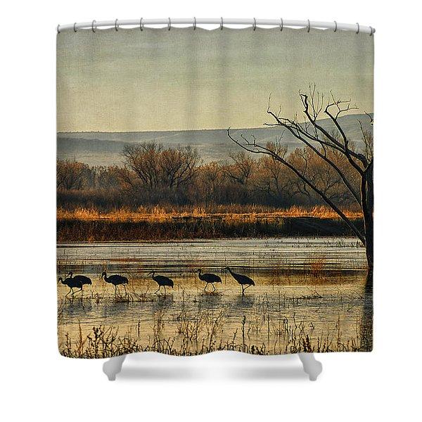 Promenade Of The Cranes Shower Curtain